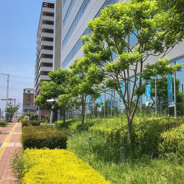 姪浜電気ビル(2018-06-25)