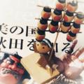 [秋田]竿灯人形(2018-08-03)