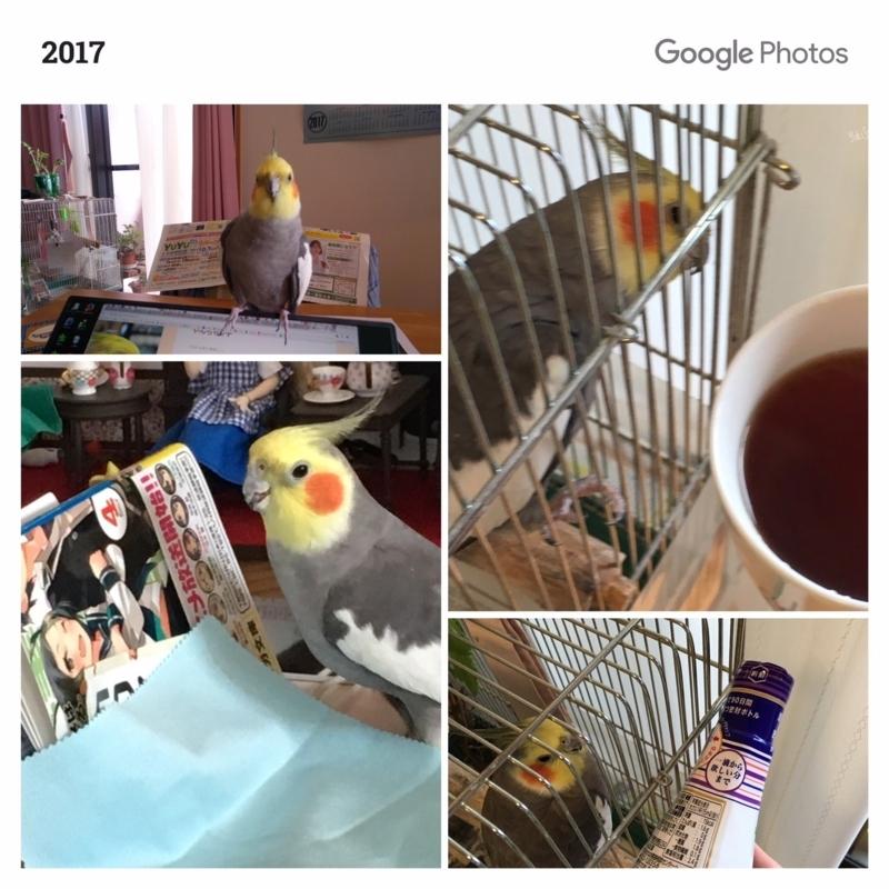 一年前の今日(2017-08-25)