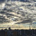 [空][雲][東京]2018-09-11