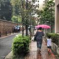 [東京][街角][雨]雨(2018-09-20)