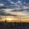 [空][雲][東京][逆光][朝]台風24号が去った朝(2018-10-01)