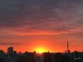 [空][雲][東京][朝][日の出]2018-10-15