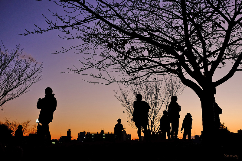 第4戦の西郷山公園@Darsana(2014-12-13)
