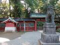 [東京][神社]根津神社(2018-10-25)