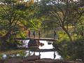 [東京][秋][庭園]六義園(2018-10-03)