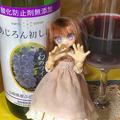 [ドール][ワイン]あじろん初しぼり2018(2018-11-04)