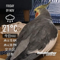 [Instaweather]2018-11-09