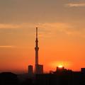 [空][雲][東京][逆光][朝][日の出]日の出(2018-11-16)