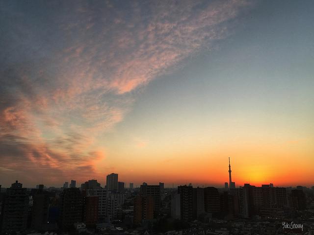 夜明け(2018-11-26)