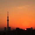 [空][雲][東京][逆光][朝][日の出]日の出(2018-11-26)