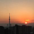 [東京][朝][太陽][逆光][朝焼け][日の出](2018-11-28)