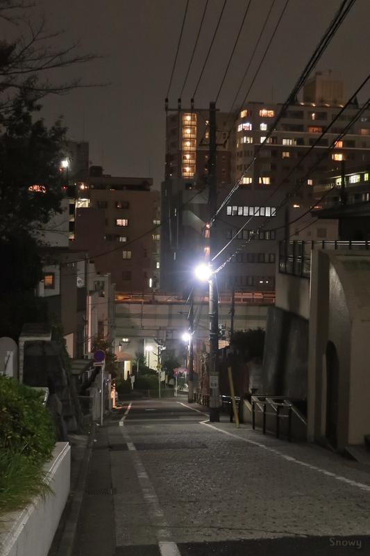 音羽パークロード600(2018-11-28)