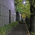 [東京][街角][夜景]関口(2018-11-28)