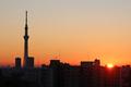 [東京][朝][太陽][逆光][朝焼け][日の出](2018-12-14)