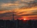 [空][雲][東京][朝][日の出](2019-01-08)