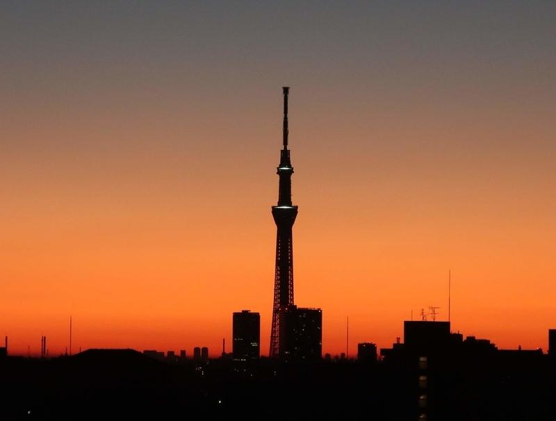 朝焼けのスカイツリー(2019-01-11 06:18)