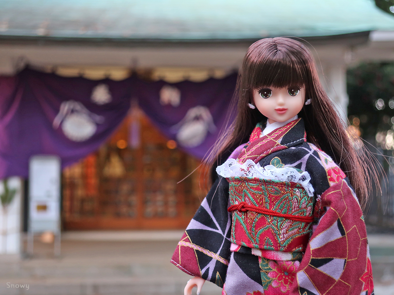 ロベリア@駒込富士神社(2019-01-01)