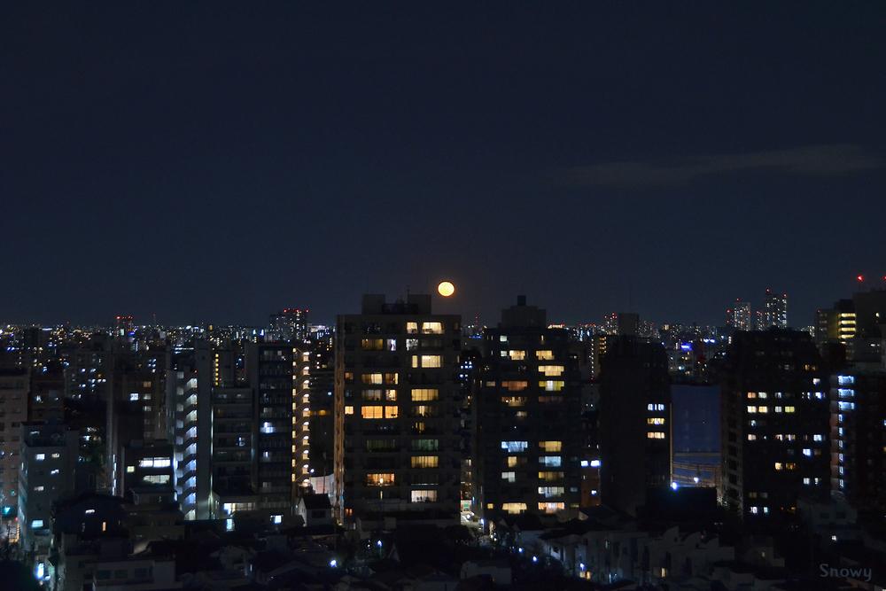 十六夜 2019-01-22 18:23