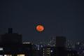 [月][東京][夜景][空]立待月 2019-01-23 19:34