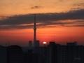 [日の出][空][雲][東京][朝]2019-01-30 06:46