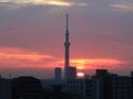 [日の出][空][雲][東京][朝]2019-01-31 06:45