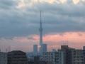 [日の出][空][雲][東京][朝]2019-02-04 06:44