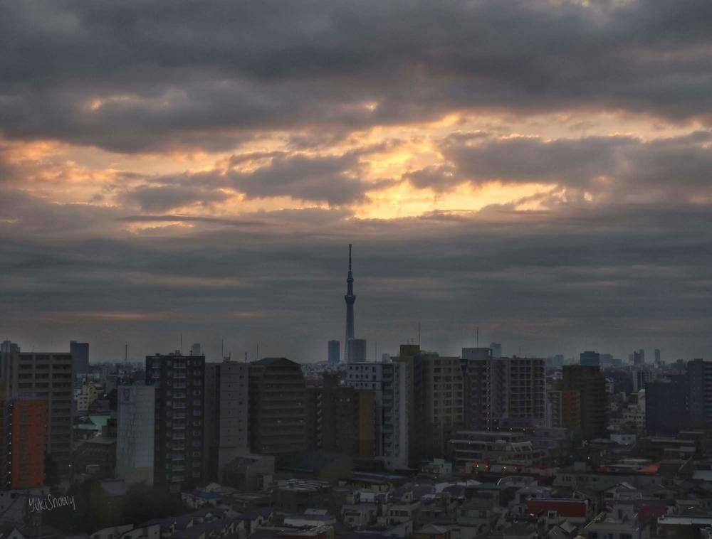 日の出(2019-02-05 06:52)