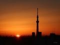 [日の出][空][雲][東京][朝]2019-02-12 06:33