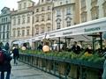 [プラハ][中欧]旧市庁舎の天文時計近く(2003-02-15)