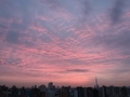 [朝焼け][空][雲][東京][朝]2019-02-19 06:20