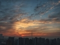 [空][雲][東京][朝][日の出]2019-02-20 06:26