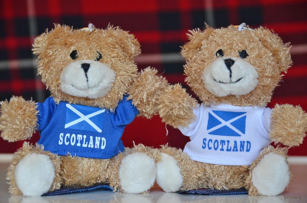 ぬいぐるみオフ―スコットランドのクマ