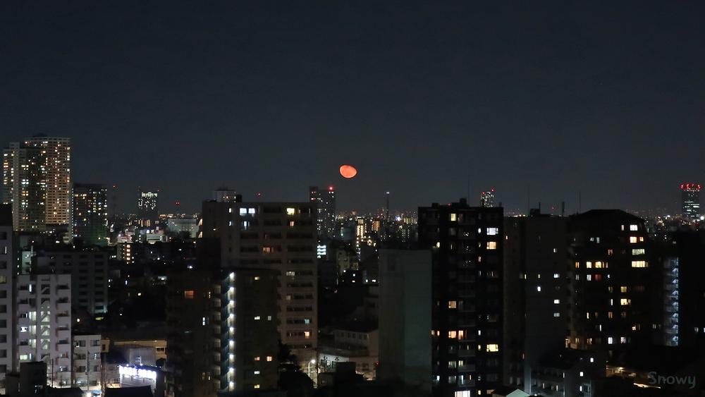 月の出/月齢18.6(2019-02-23 21:47)