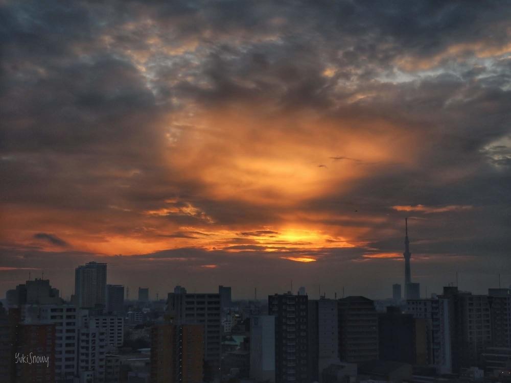 日の出からしばらく経った空(2019-02-25 06:28)