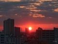 [日の出][空][雲][東京][朝]2019-03-15 05:57