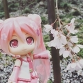 [ねんどろいど]桜ミク(2019-04-01)