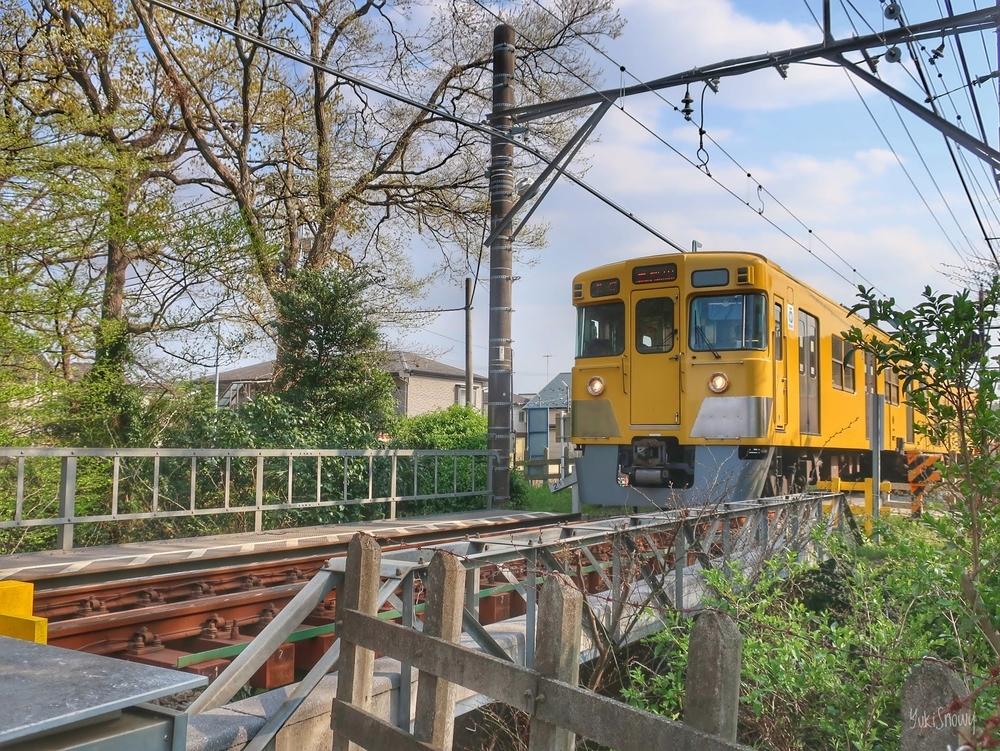 鷹の橋(玉川上水開渠)@小平市と西武鉄道(2019-04-06)