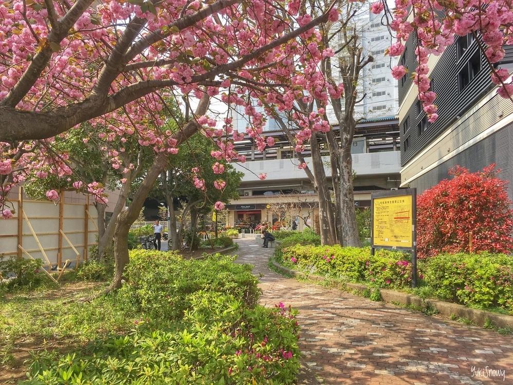 笹塚駅前(2019-04-19 13:25)