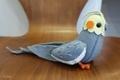 [ぬいぐるみ]森下小鳥病院(2019-04-23)