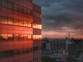 [日の出][空][雲][東京][朝]2019-05-16 04:49