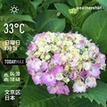 [Instaweather]WeatherShot(2019-05-26)