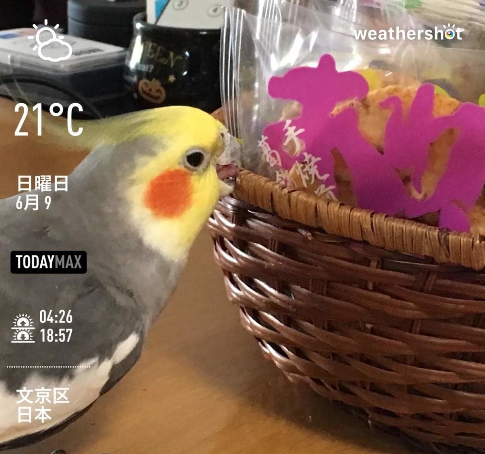 WeatherShot(2019-06-09)