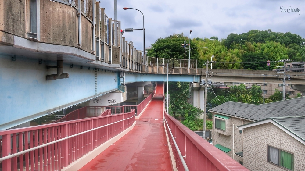 陸橋の立体交差(2019-06-09 12:38)