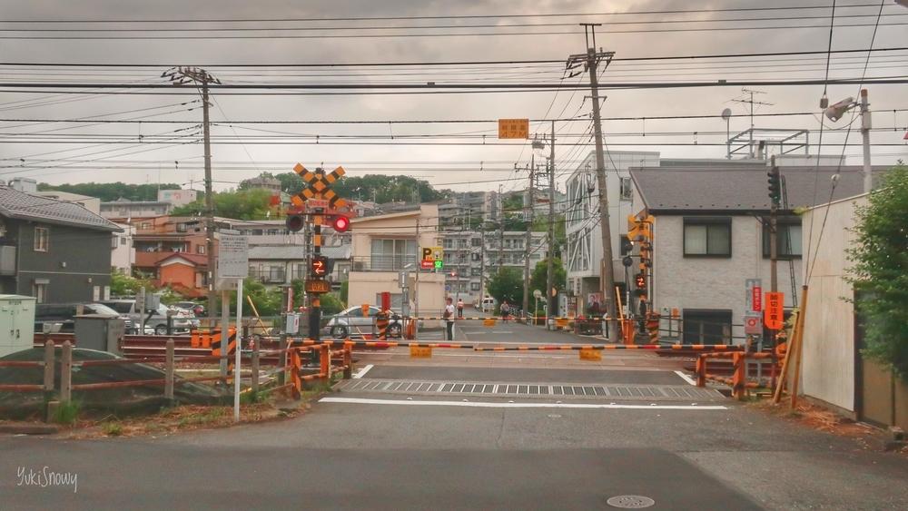 川崎市(2019-06-08)