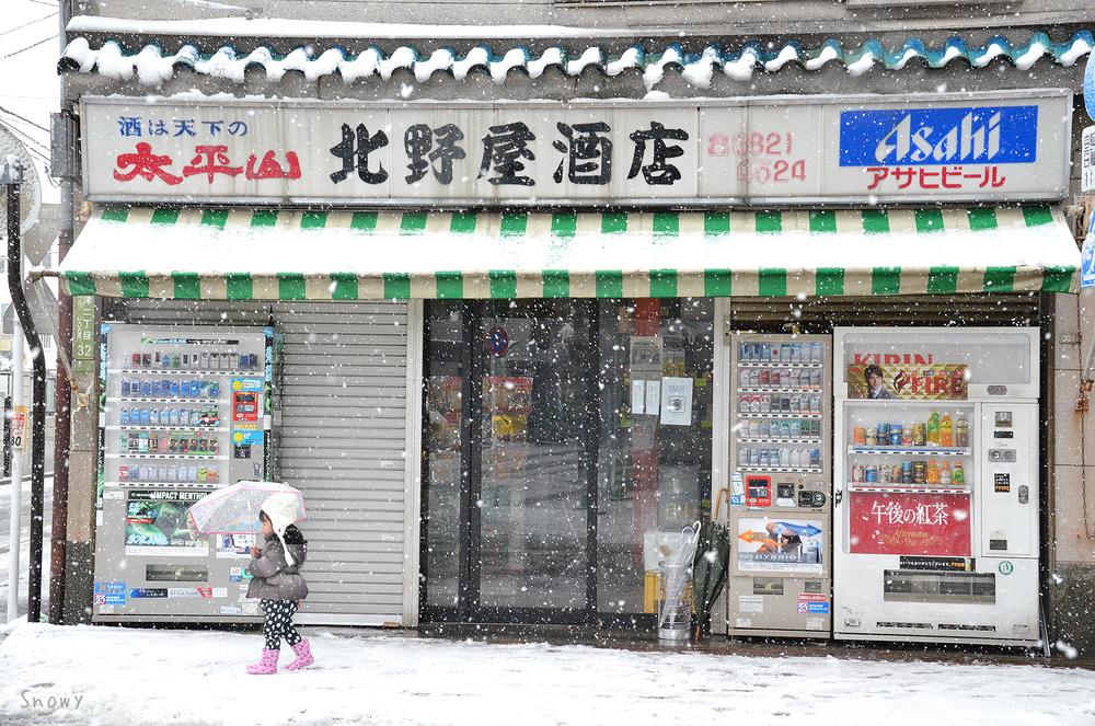 雪の日(2012-02-29)