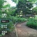 [Instaweather]WeatherShot(2019-06-16)