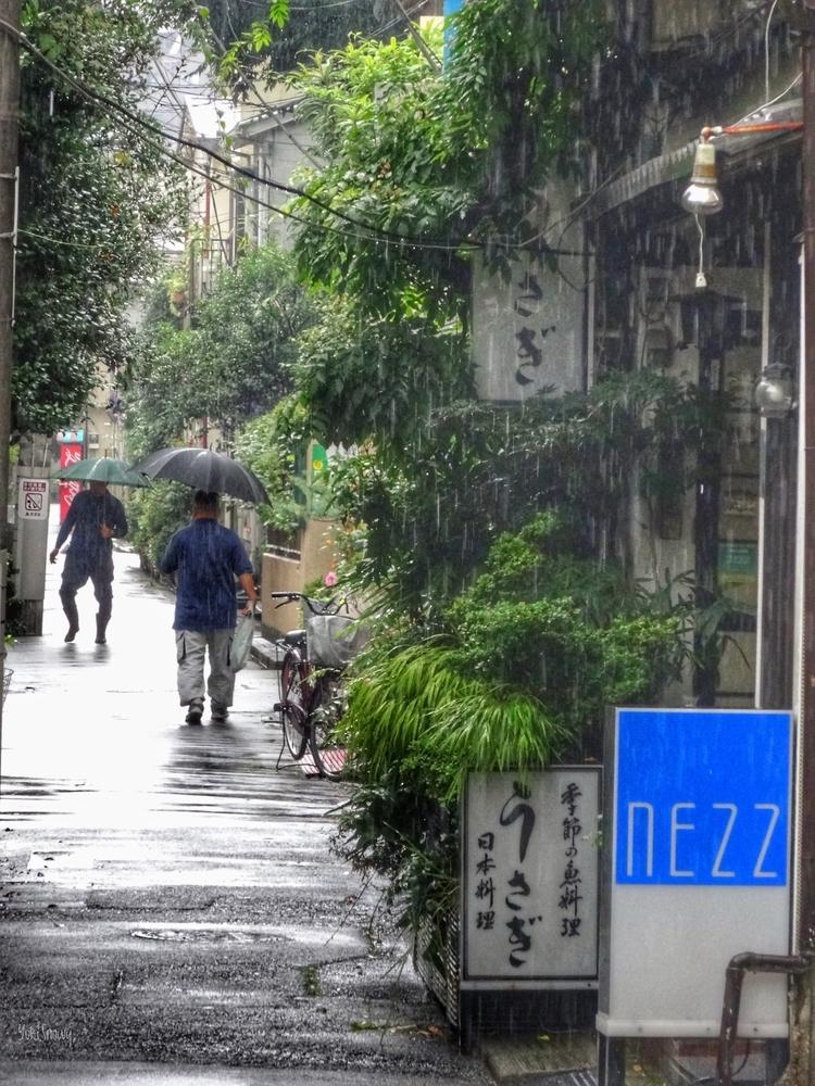 梅雨の日(2015-07-06 12:06)