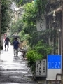 [東京][路地][谷根千]梅雨の日(2015-07-06 12:06)