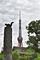 芝公園のリスと東京タワー(2019-06-28 14:21)